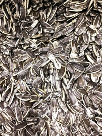 Salted Sunflower Seeds